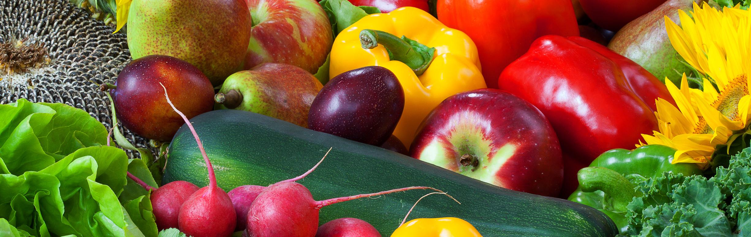 Lehrgang Diätetik und gesunde Ernährung | HGU